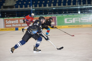 IceBusiness vs HoDev 20140220-203931 2746
